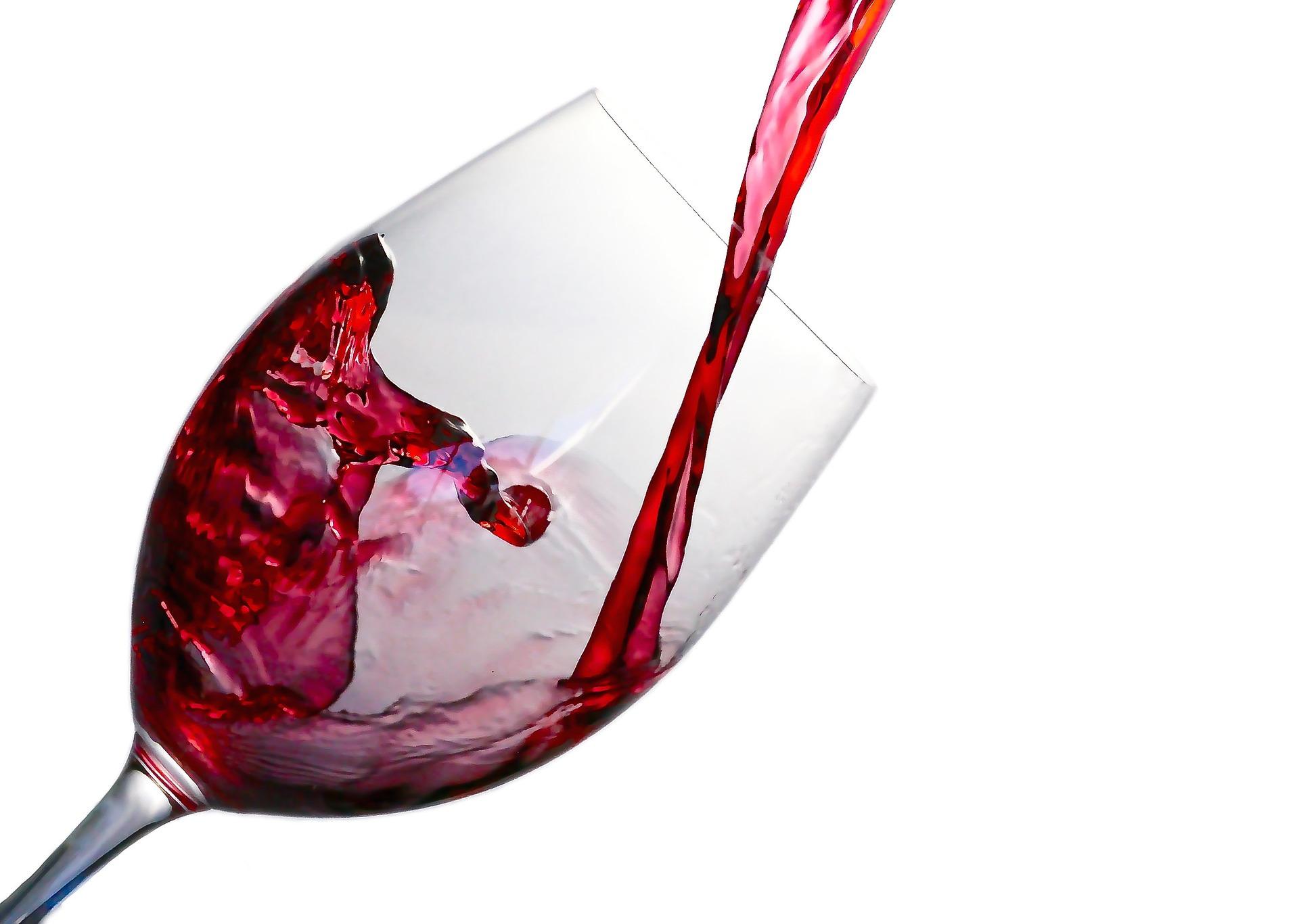 ČURUG: Noć mladog vina sledeće subote
