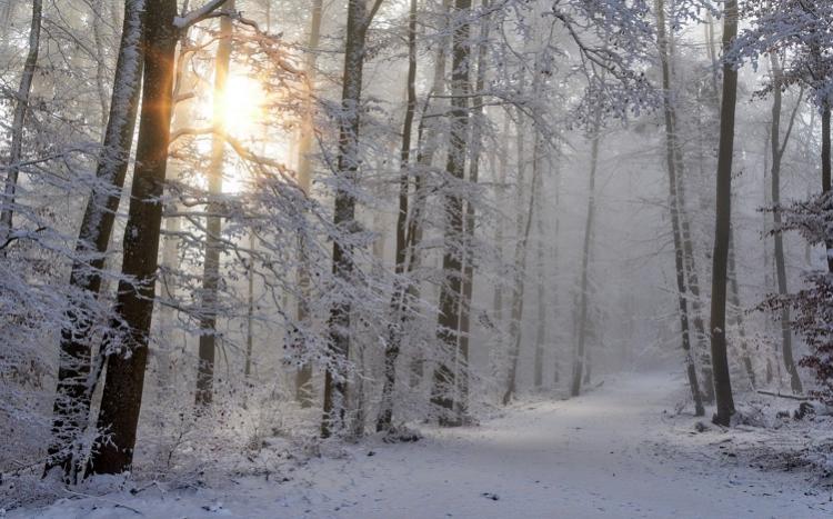 Danas oblačno sa snegom, temperatura do 4 stepena