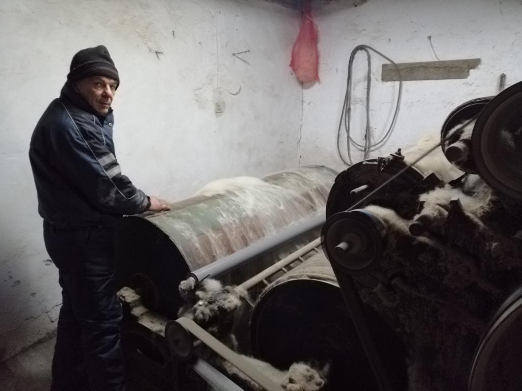 Šajkašanin, poreklom iz Žablja, jedini vunovlačar u Vojvodini?