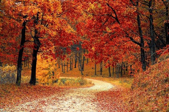 Večeras nam stiže jesen