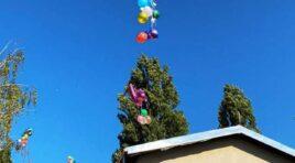Počela Dečja nedelja u opštini Žabalj